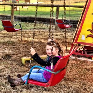 Mainstay Farm swing